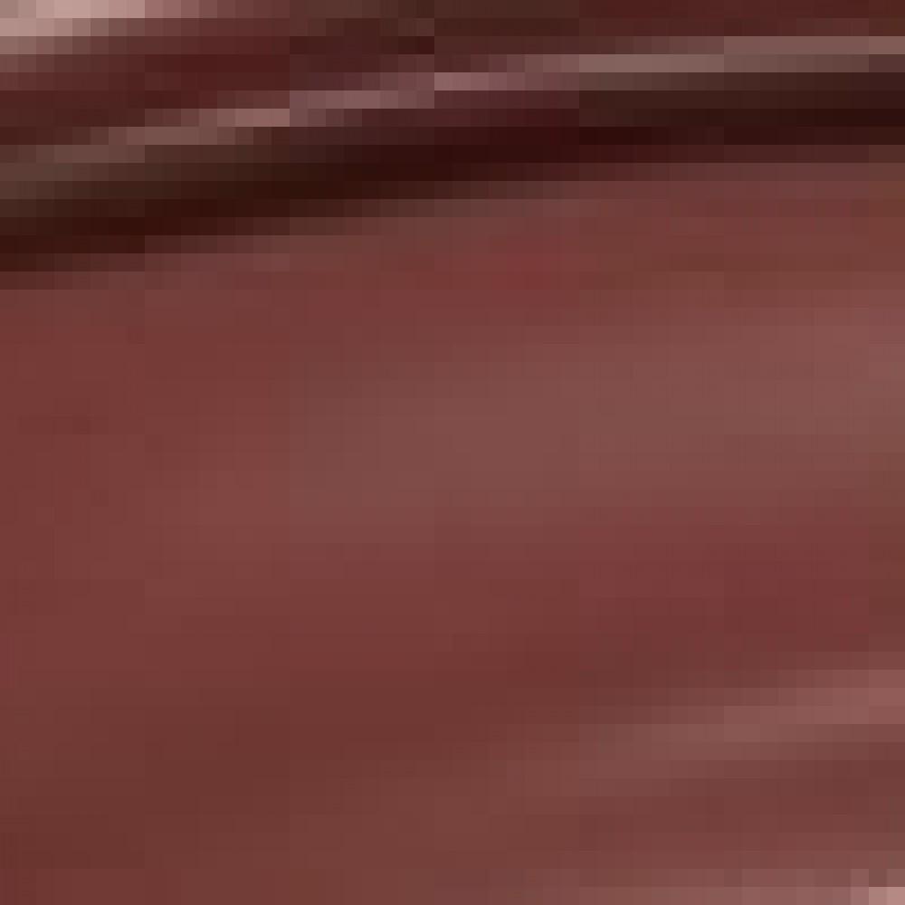 DANESSA MYRICKS BEAUTY COLORFIX 24H BROWNIE